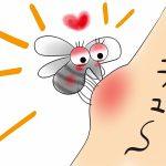 蚊はウィルスを運ぶことがあります